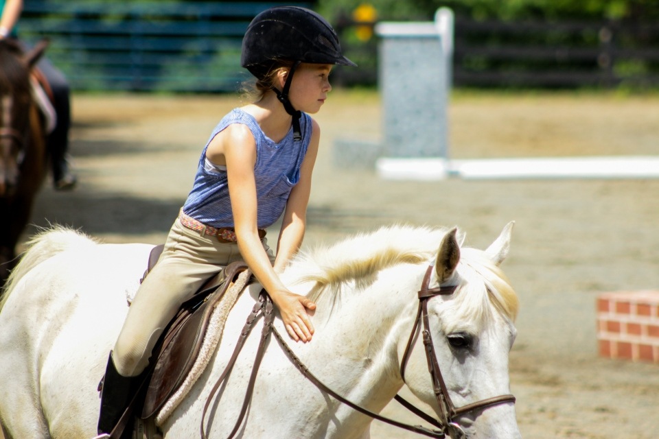 Daughter to take their first riding lesson